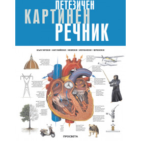 Петезичен картинен речник