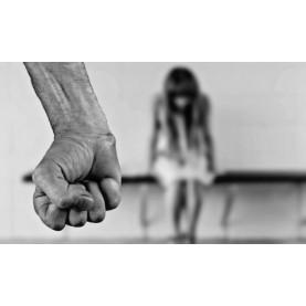 Под юмрука на насилника- Весела Манолова